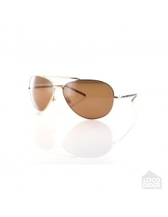 CARVE Top Dog Gold Eyewear