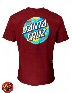 Santa Cruz Primary Dot Wine