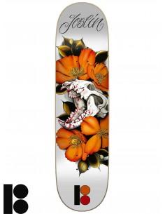 Tavole Skate PLAN B Cranial Joslin 8.125