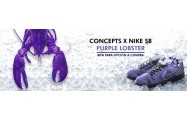 Formulario Nike SB Dunk Purple Lobster